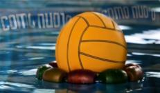 Nuova Defim Orsogril per Como Nuoto