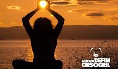 Nuova Defim Orsogril   Summer Holidays 2020