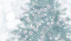 Santo Natale 2019 chiusura aziendale festività natalizie