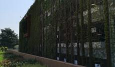 Il giardino verticale sul retro della struttura