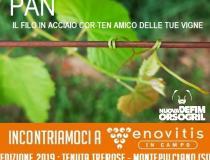 PAN, il filo per vigneti in corten rinnova l' appuntamento a Enovitis in Campo 2019
