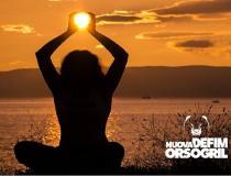 Nuova Defim Orsogril | Summer Holidays 2020
