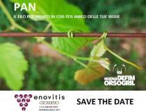 Pan filo in COR-TEN per vigneti: incontriamoci a Enovitis in Campo 2021